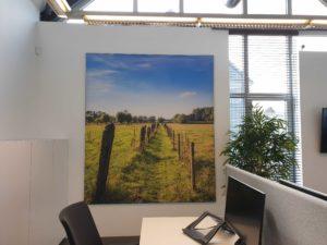 Akoestisch wandpaneel op kantoor bedrukt met foto